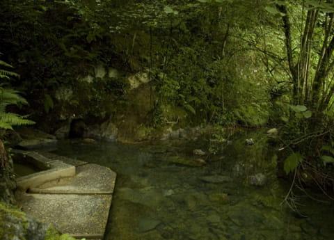 Chambres d'hôtes Pays Basque Soule sources de Camou