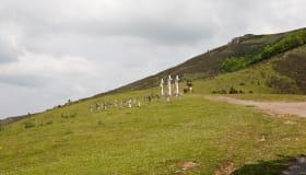 Ainhoa croix et stèles sur colline de l'Atxulai