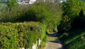 Sare voie romaine ©CDT64