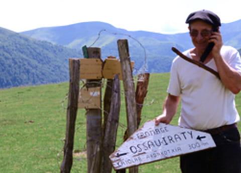berger-estive-cayolar-fromage-brebis-pyrenees-ossau-iraty