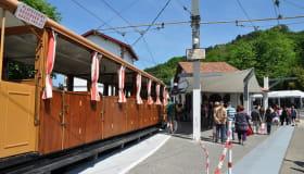 3474_La Rhune petit train 06 © TC Basques