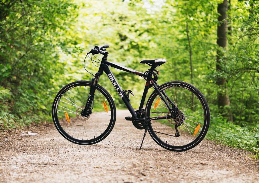 forest-bike-bulls-100582 (1)